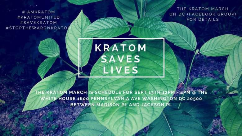 The No. 1 Greatest Kratom Mistake You Are Creating
